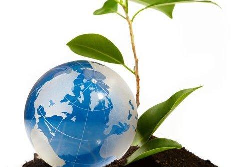 آلودگی محیط زیست و تاثیر گیاهان در جلو گیری از آن
